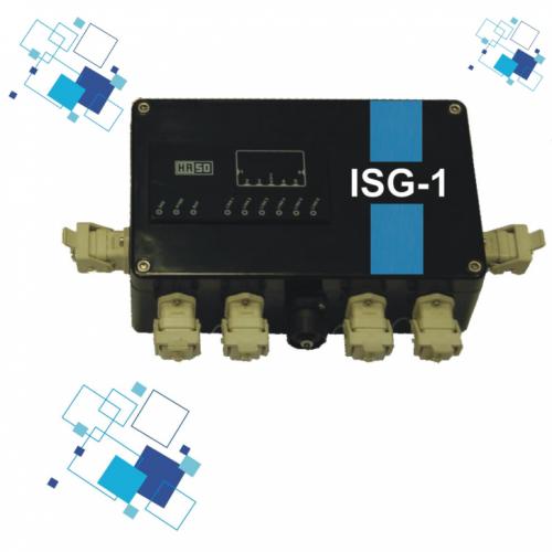 ISG 1